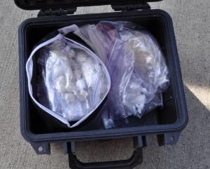 Drugs in case - Drennan Seizure